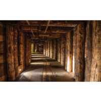 Fototapeta Wood Tunnel Mine 368 x 254