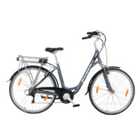 Xplorer E-bike Silver Line Lady 28